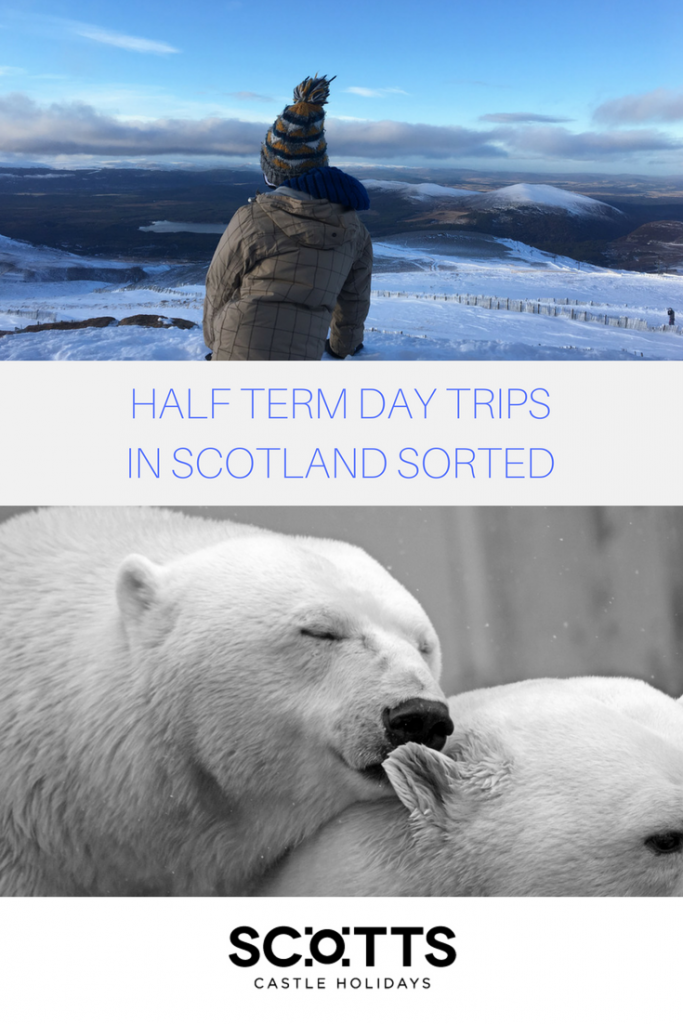 Whether it's the daffodils poking their yellow petals up through the grass teasing spring, a cluster of post-Easter spring bank holidays or the imminent changing of the clocks, we sense there's a half term looming. Residents of and visitors to Scotland will be clambering for days out with the kids in half term. Look no further... We've pulled together some of the most popular attractions and things to do in Scotland during half term. Whether you're looking for excitement, relaxation, education or culture there is something to help you create memories with the kids.