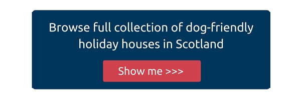 Dog-friendly large holiday houses in Scotland