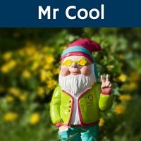 Cool gnome in the garden