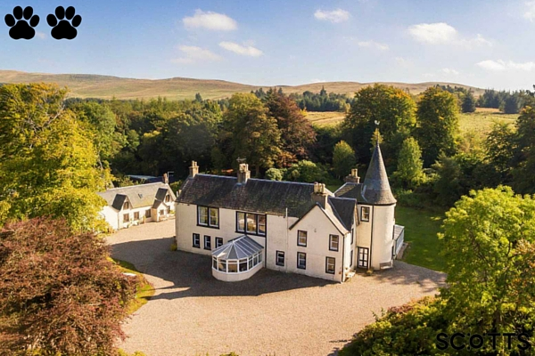 Large luxury holiday house Dunblane - holiday houses your pet will love
