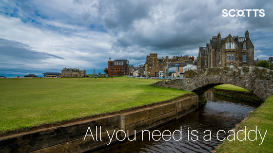 Golfing holidays in Scotland are proffered in abundance. Championship courses abound.