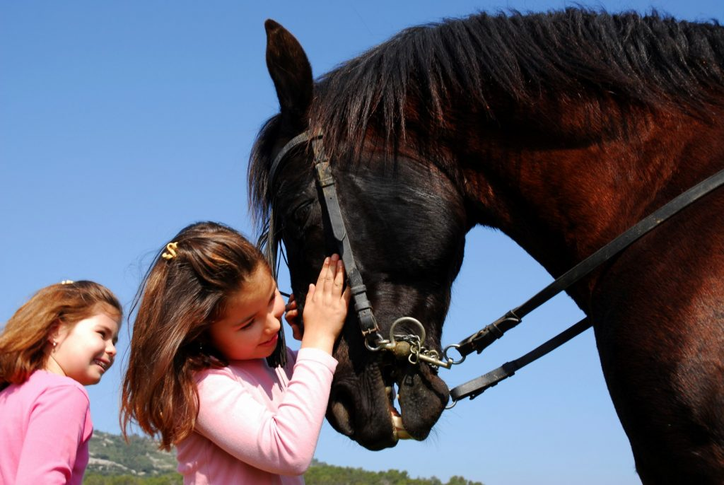 Two young girls, one petting a horse